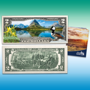 Littleton Coin Company Blog - Landscapes Notes