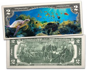 Take a dive under the sea - Littleton Coin Blog