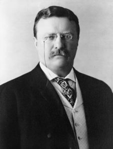 Theodore Roosevelt - Littleton Coin Blog