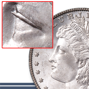 Alligator Eye Morgan Dollar - Littleton Coin Blog