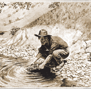 California Gold Rush - Littleton Coin Blog