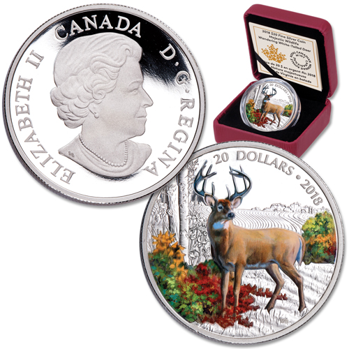 'Fall'ing in Love with the Colors, Cool Breezes and Coins of Autumn! - Littleton Coin Company Blog